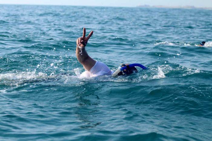 استخر آزادی از امروز میزبان ملیپوشان شنا