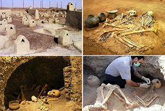 کشف اسکلت میمون پنج هزار ساله در شهر سوخته سیستان