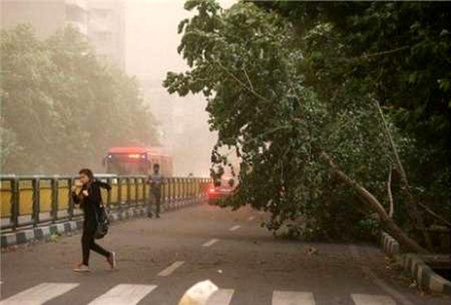 باد شدید  استان مرکزی را فرا می گیرد