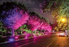 جرمخیزی در شهر را با شبهای روشن کاهش دهیم