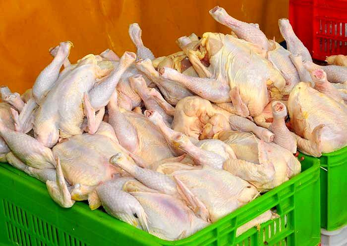 فروش مرغ گران تر از 15هزار تومان تخلف است/ برخورد با متخلفان