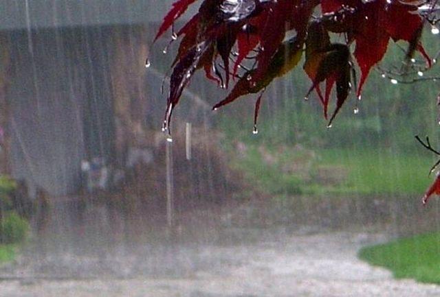 بارش باران در بشاگرد و جاسک/ تداوم بارشهای رگباری تا پایان هفته