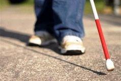 17 درصد معلولان یزدی را نابینایان و کم بینایان تشکیل می دهند
