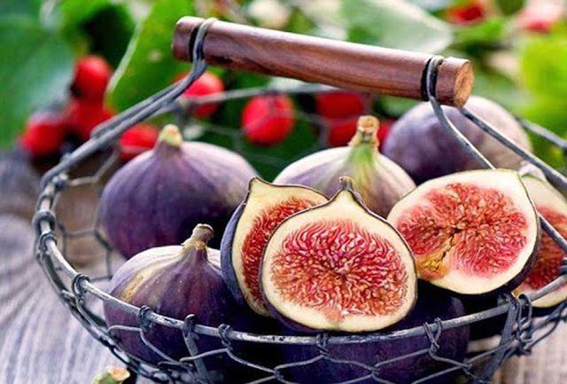 خواص میوه های تابستانی/ انجیر