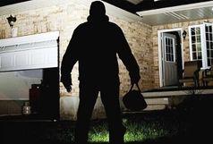 کشف 17 فقره سرقت منزل