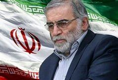وزارت دفاع شهادت فخری زاده را تایید کرد
