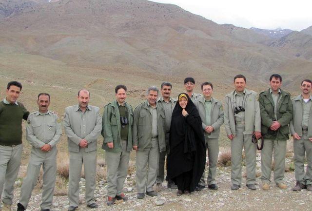 بهترین گیلاس اورگانیک ایران از روستای دیز باد بالا صادر میشود