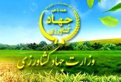 تحقیق و تفحص از عملکرد وزارت جهاد کشاورزی کلید خورد
