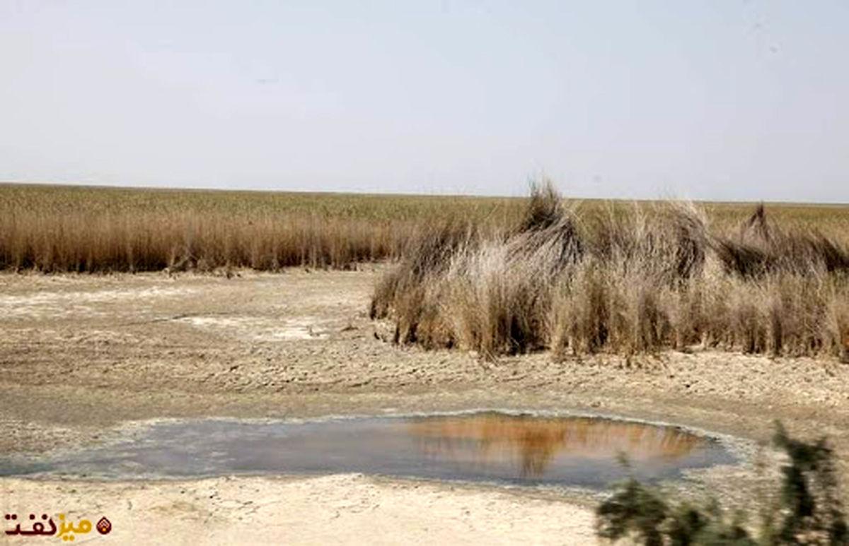 کم آبی در این فصل از سال،  یک روند طبیعی است/ حقآبه هورالعظیم تامین نمی شود/ مخزن آب کرخه وضعیت مناسبی ندارد