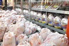 نرخ مرغ در تهران به زیر ۱۰ هزار تومان رسید