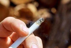 اگر سیگار را از ماشین پرتاب کنید،بیش از 140میلیون جریمه میشوید!
