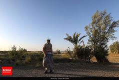 اجرای طرح نذر آب قمی ها در سیستان و بلوچستان