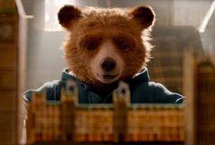 داستان یک خرس بهترین فیلم منتقدها شد