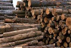 کشف بیش از 8 تن چوب قاچاق