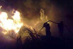 آتش سوزی در 5 هکتار از مزارع گندم