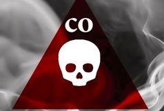مسمومیت141 نفر بر اثر مسمومیت با گاز گرفتگی در کشور