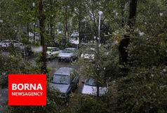 بارش برف در تهران + فیلم
