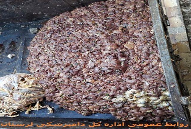 کشف و معدوم سازی 1500 کیلو کله مرغ در کوهدشت