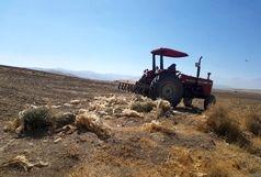 الزام کشاورز  ِغیر بومی به جمع آوری ضایعات پلاستیکی از اراضی کشاورزی