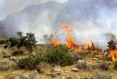 مهار آتش در کوه لار باشت
