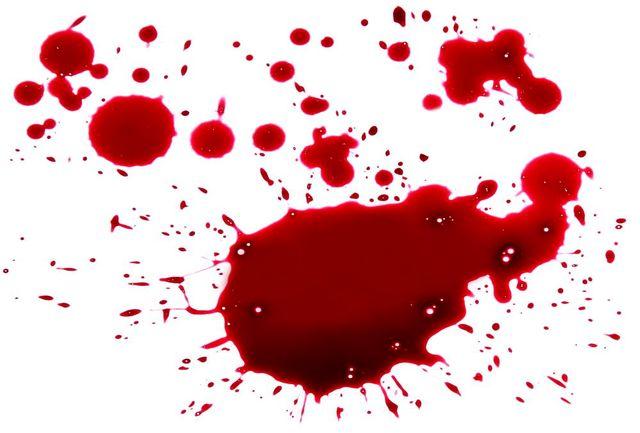 قتل معاون عمرانی حرم امامزاده صالح به کارش ارتباطی نداشته است