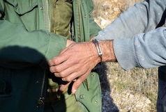 دستگیری 7 متخلف زیست محیطی در طی هفته جاری در رومشکان