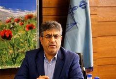 تبانی و زد و بند کارکنان شهرداری اصلا صحت ندارد