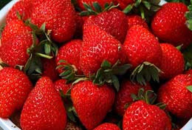 توت فرنگی نقش مهمی در خونسازی بدن دارد