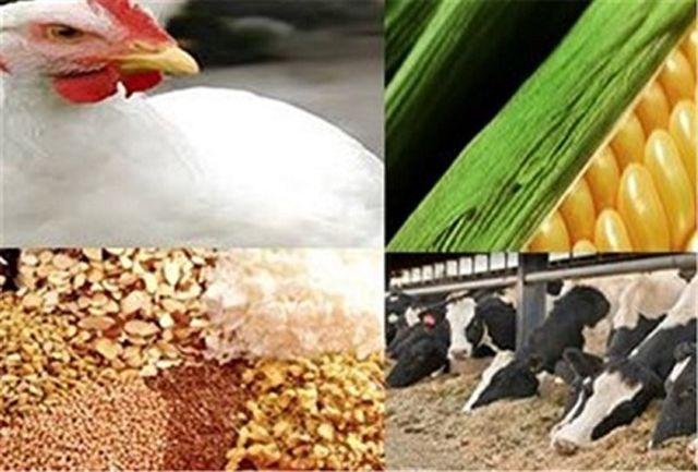 صدورکد بین المللی IR برای کارخانه خوراک دام در خراسانجنوبی
