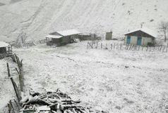 بارش برف در پنجمین روز از بهار
