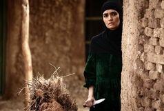 انتقاد کارگردان «ماهورا» از تعویق در اکران فیلم