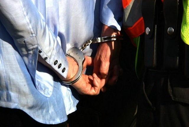 دستگیری عاملان ایجاد مزاحمت شبکه مجازی