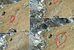 تصویر برداری یک قلاده پلنگ در منطقه جواهردشت سیاهکلرود شهرستان رودسر
