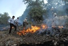 زندان در انتظار عاملان آتشسوزی در جنگلها