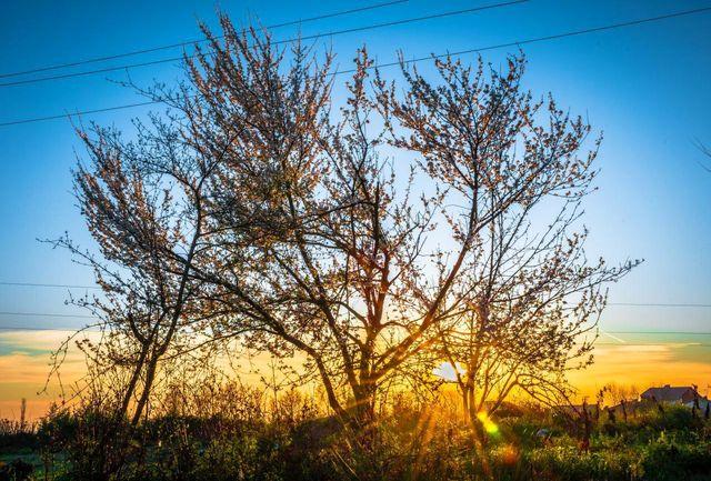 افزایش تدریجی دمای هوای گیلان