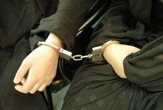 دستگیری سارقان حرفهای در قروه