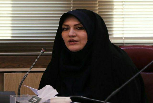 کارگروه تخصصی محیط زیست دهیاریهای کشور در قزوین