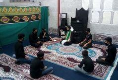 پرورش «بلبلان حسینی» در مناطق محروم استان قم