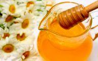 تولید بیش از 20 تن عسل در تایباد