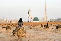 حضرت زهرا(س) در یکی از این سه نقطه دفن شده اند