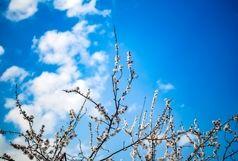 آسمانی صاف و هوای بهاری در البرز