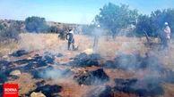 ۵ هکتار از منابع طبیعی همدان در آتش سوختند