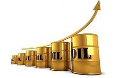 افزایش قیمت نفت سبک ایران