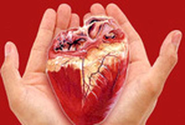 اعضای یک بیمار مرگ مغزی شیروانی به پنج بیمار اهدا شد
