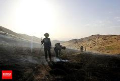 20هکتار از درختان بلوط کوه مقیم آباد در آتش سوخت