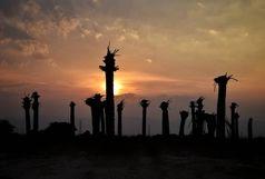 برگزاری مراسم ختم مرگ نخل ها در خرمشهر / خشک شدن 6 میلیون نخل
