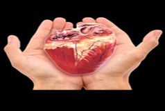 اهدا شدن اعضای بدن 2 بیمار مرگ مغزی در زنجان