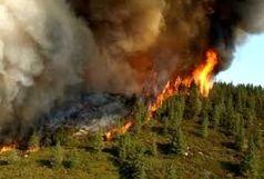 آتش سوزی منابع طبیعی در