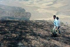 آتش به جان 5 هکتار از اراضی طبیعی افتاد