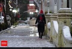 تداوم بارش برف تا 24 ساعت آینده در اردبیل